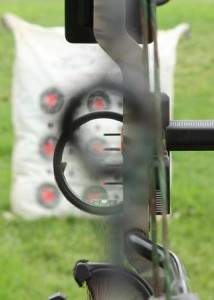 INCORRECT sight picture. Align both circles BEFORE placing the pin on target.